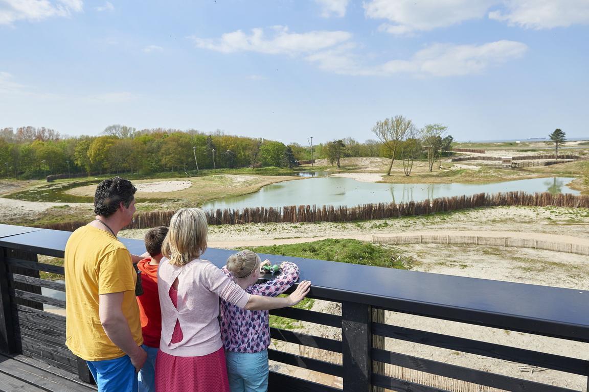 Knokke-Heist - Natuurpark Zwin