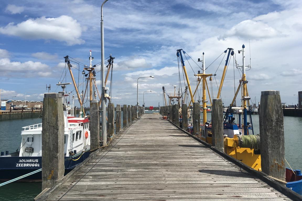 Breskens - Hafen