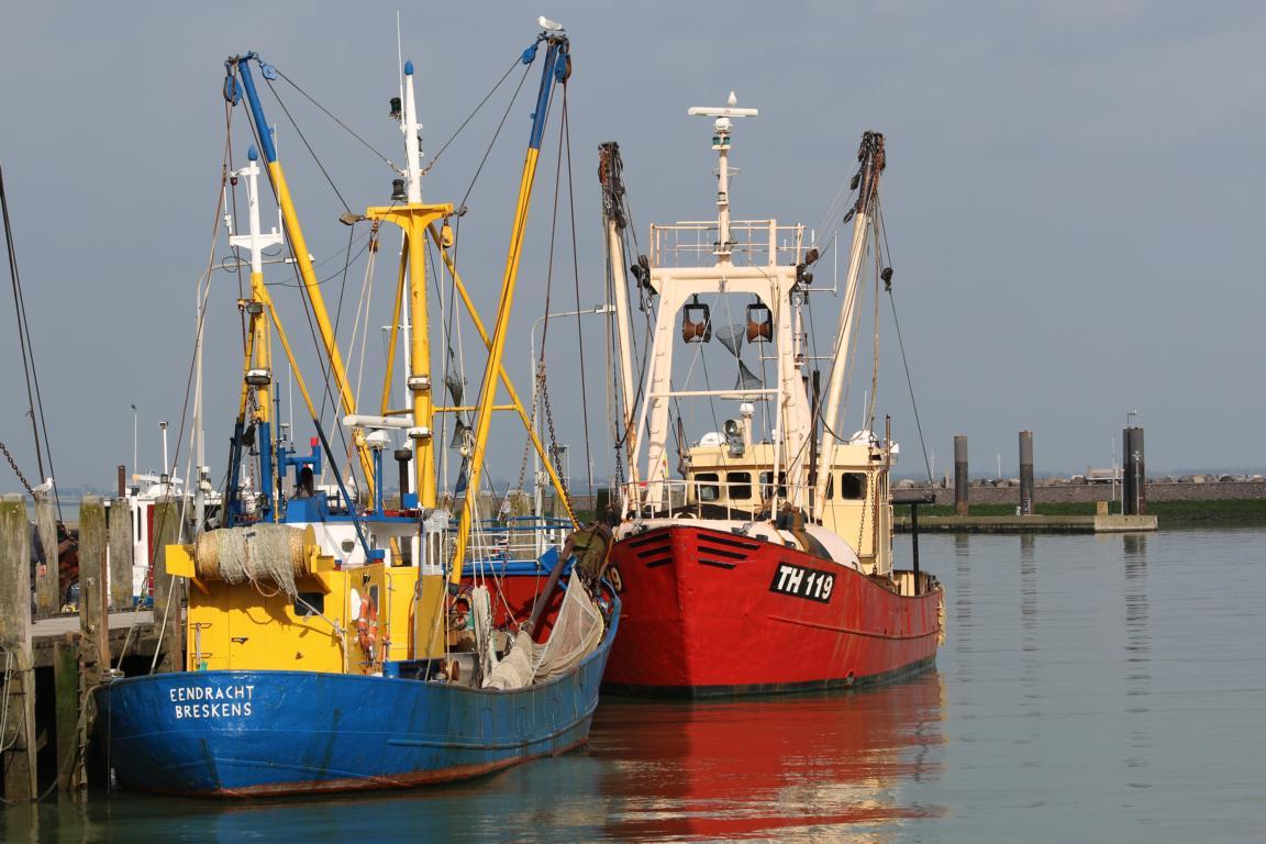 Breskens - Fischereihafen