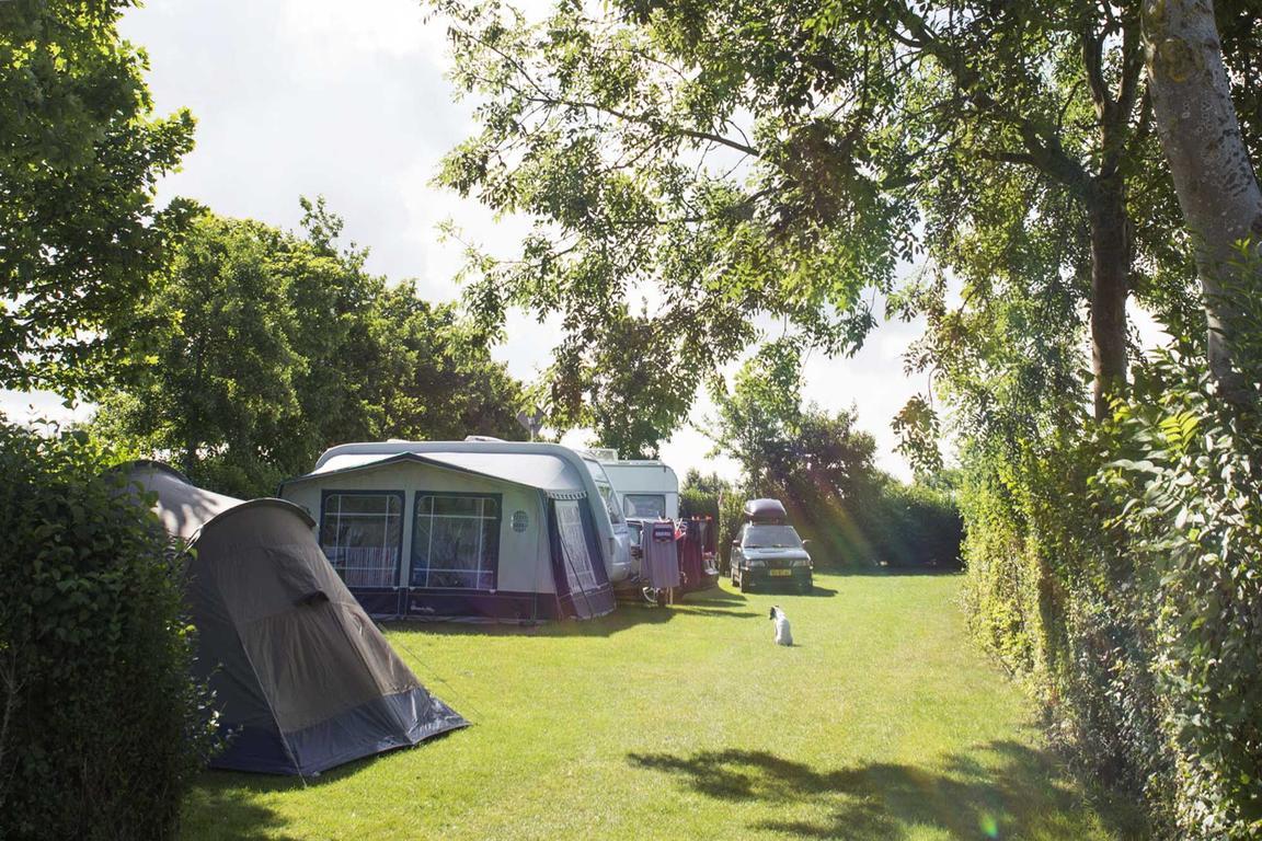 Comfortplaats vanaf 105 m2 huisdierveld