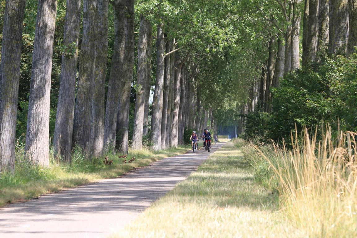 Cadzand-Bad: Alleen-Landschaft